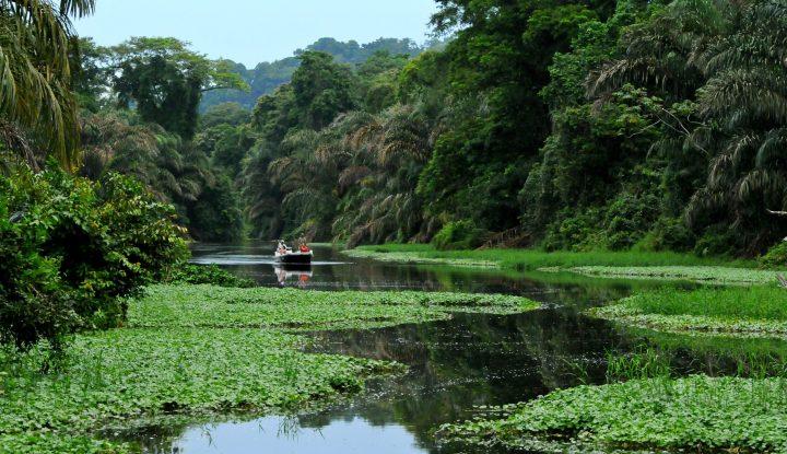 LE COSTA RICA SELON NOSVOYAGEURS